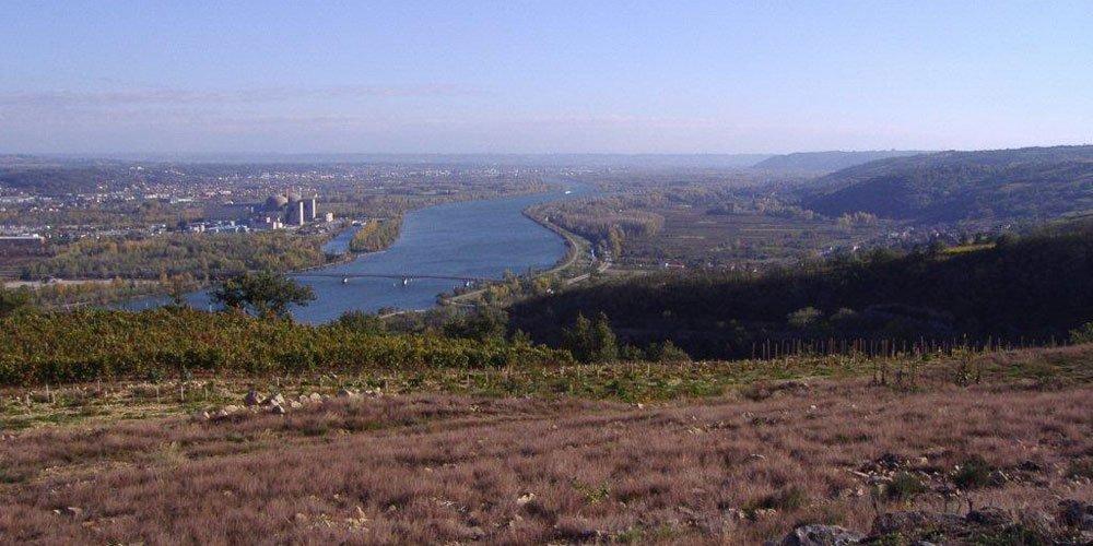 Domaine du Monteillet wijnproducent