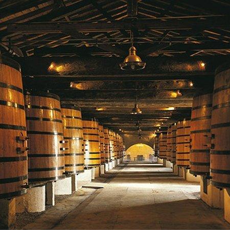 Wijnproducenten waar Verbeek Wijnimport mee samenwerkt